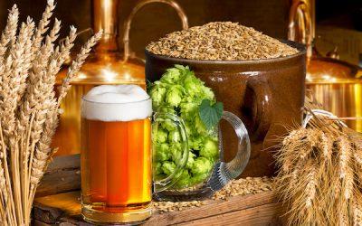 Workshop bier brouwen en proeven